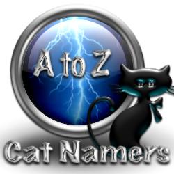 N Cat Names Male Cat Names Lists - N